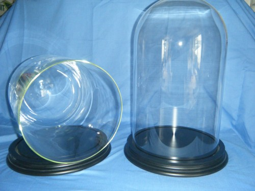 Glass Domes with wooden base